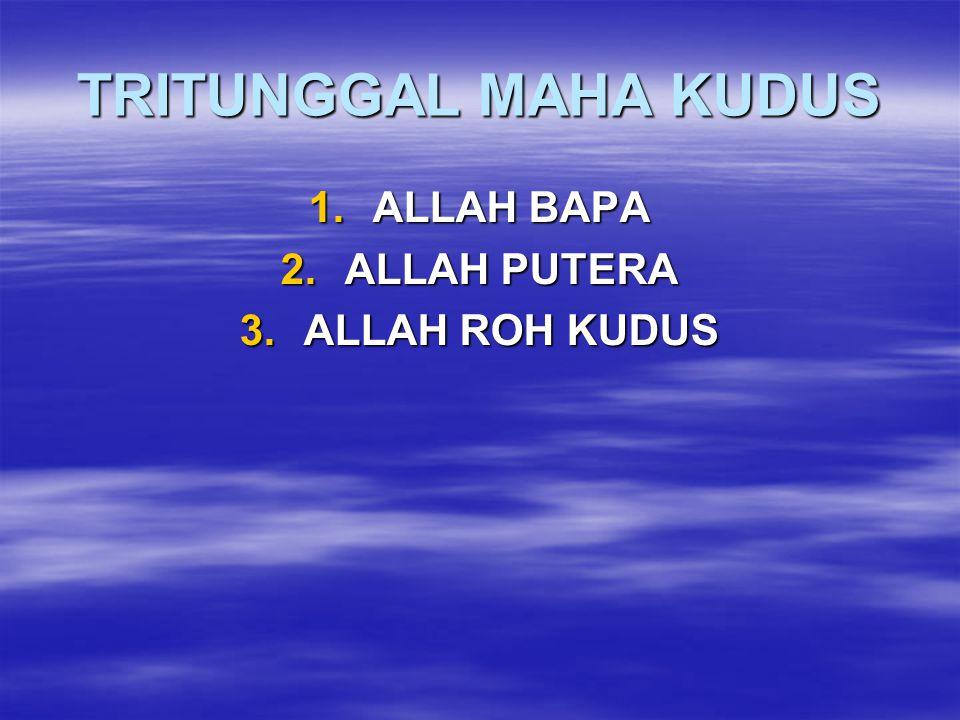 TRITUNGGAL MAHA KUDUS 1.ALLAH BAPA 2.ALLAH PUTERA 3.ALLAH ROH KUDUS