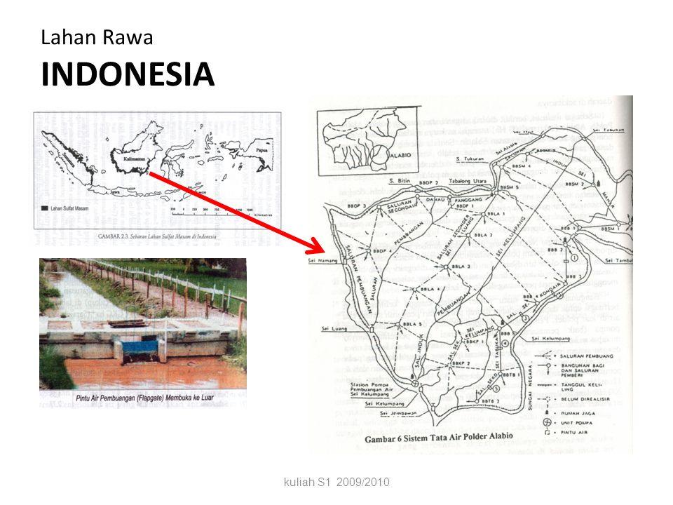Sejarah pengembangan daerah rawa Sejak ratusan tahun, petani Bugis (Sulsel) dan Banjar (Kalsel) telah memanfaatkan sumberdaya lahan rawa (disekitar su