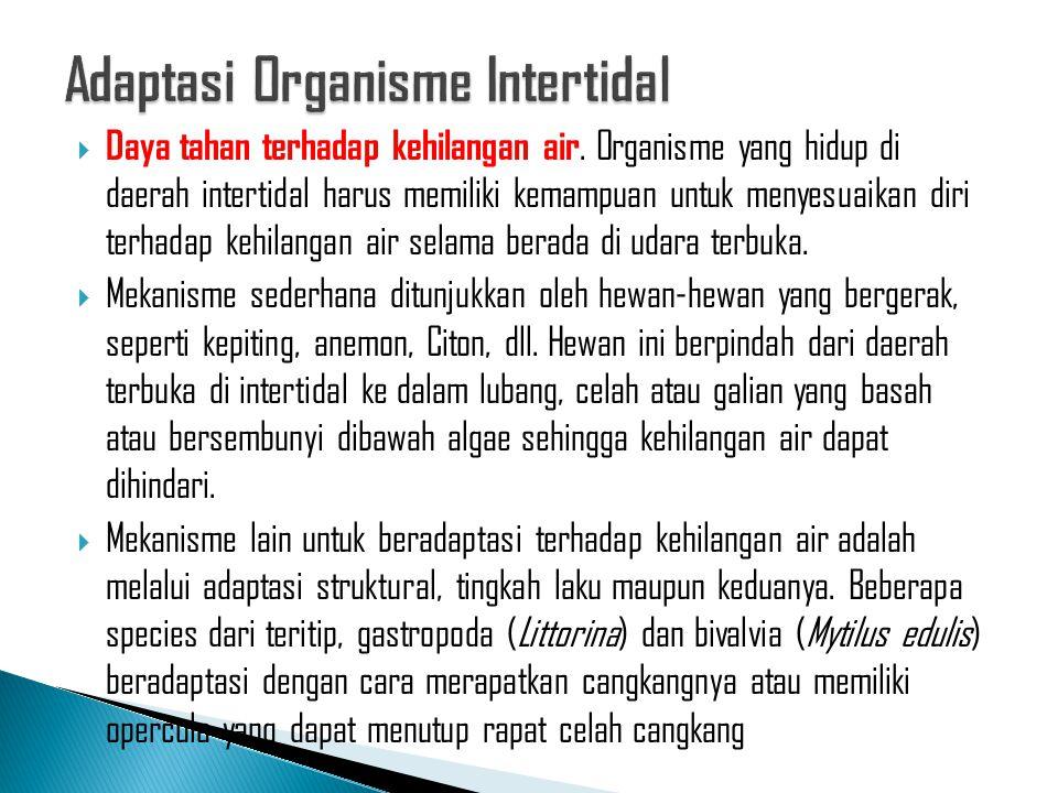  Daya tahan terhadap kehilangan air. Organisme yang hidup di daerah intertidal harus memiliki kemampuan untuk menyesuaikan diri terhadap kehilangan a