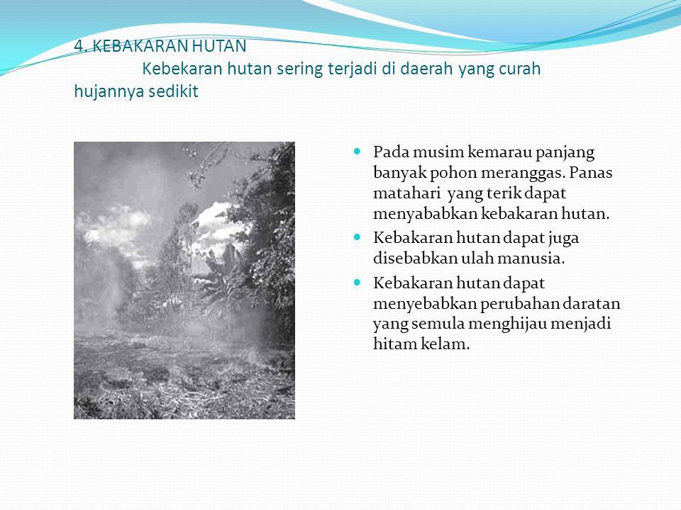 4. KEBAKARAN HUTAN Kebekaran hutan sering terjadi di daerah yang curah hujannya sedikit Pada musim kemarau panjang banyak pohon meranggas. Panas matah