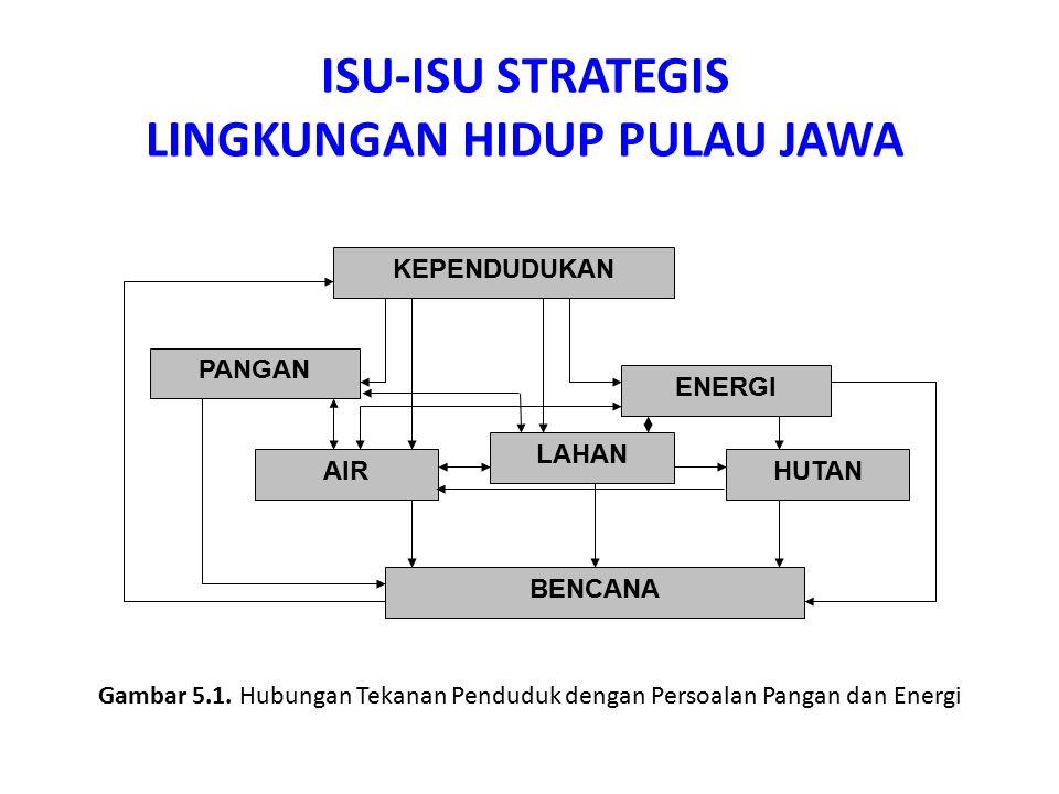 1.Tekanan Penduduk Pulau Jawa 2.Mempertahankan Sawah, Konversi Lahan, dan Pangan 3.Meluasnya Jumlah Lahan Kritis, Degradasi dan Deforestasi Hutan 4.Daya Dukung Lingkungan Hidup Terlampaui Isu-isu Strategis Lingkungan Hidup Pulau Jawa