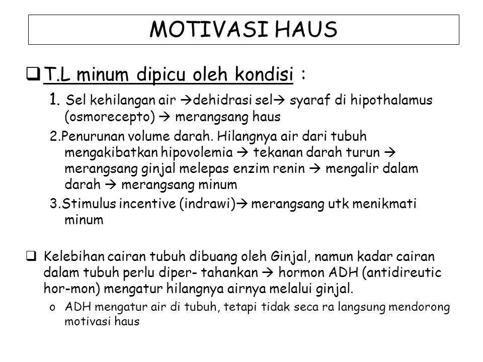 MOTIVASI HAUS  T.L minum dipicu oleh kondisi : 1. Sel kehilangan air  dehidrasi sel  syaraf di hipothalamus (osmorecepto)  merangsang haus 2.Penur