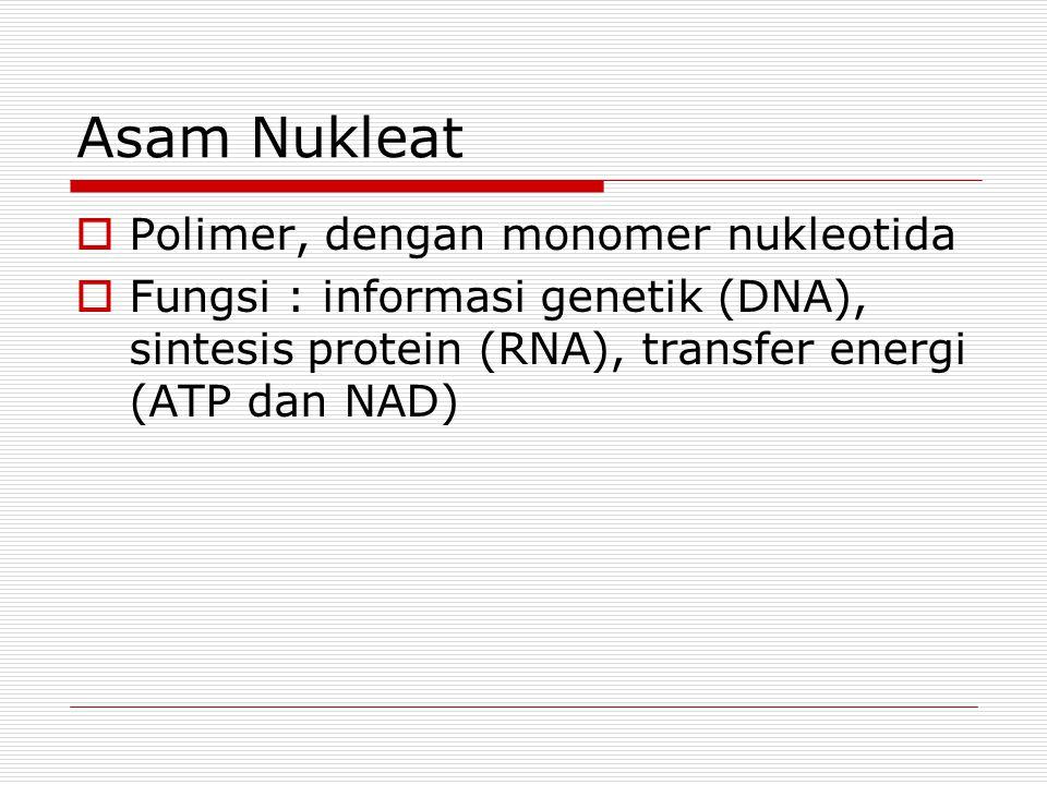 Asam Nukleat  Polimer, dengan monomer nukleotida  Fungsi : informasi genetik (DNA), sintesis protein (RNA), transfer energi (ATP dan NAD)