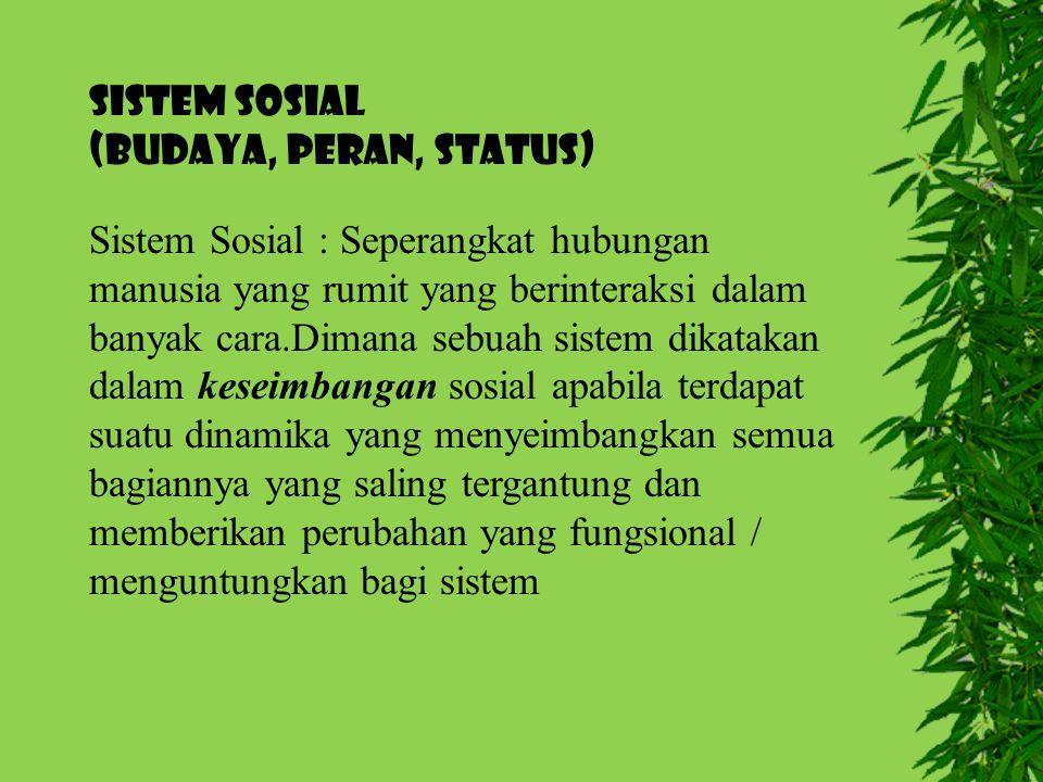 SISTEM SOSIAL (Budaya, Peran, Status) Sistem Sosial : Seperangkat hubungan manusia yang rumit yang berinteraksi dalam banyak cara.Dimana sebuah sistem
