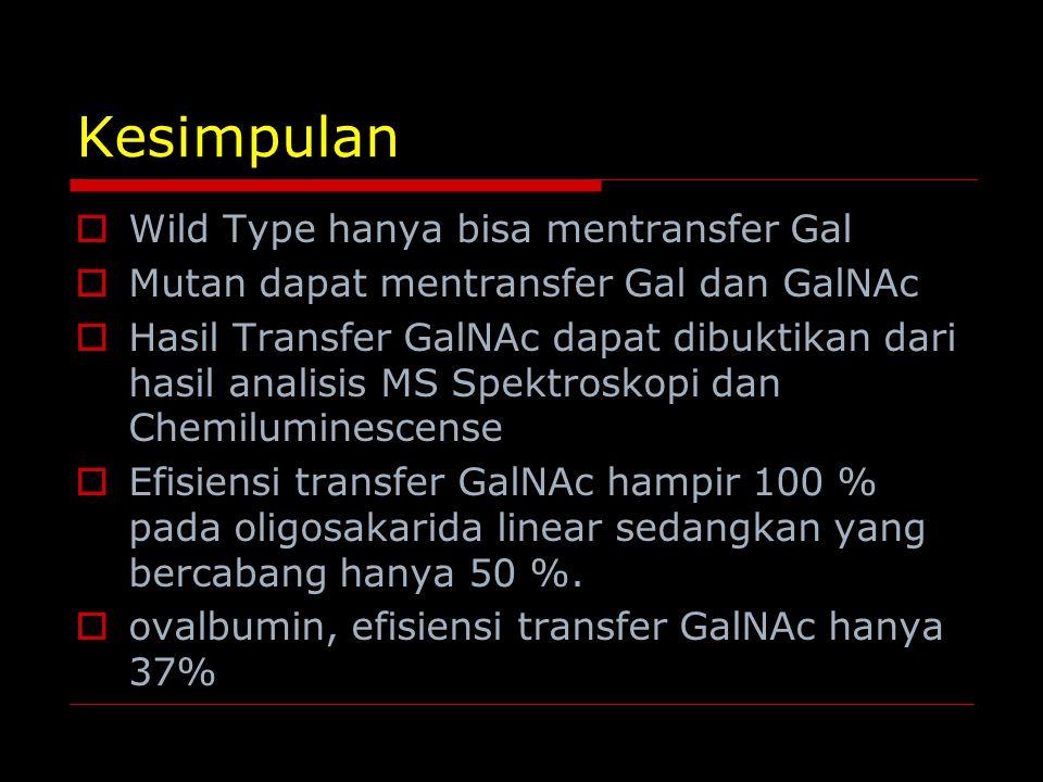 Kesimpulan  Wild Type hanya bisa mentransfer Gal  Mutan dapat mentransfer Gal dan GalNAc  Hasil Transfer GalNAc dapat dibuktikan dari hasil analisi