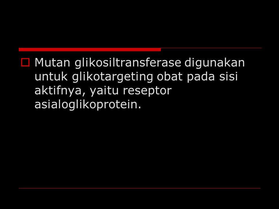  Mutan glikosiltransferase digunakan untuk glikotargeting obat pada sisi aktifnya, yaitu reseptor asialoglikoprotein.
