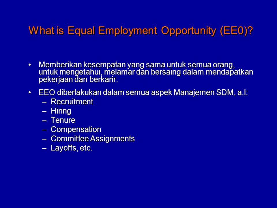 Memberikan kesempatan yang sama untuk semua orang, untuk mengetahui, melamar dan bersaing dalam mendapatkan pekerjaan dan berkarir.