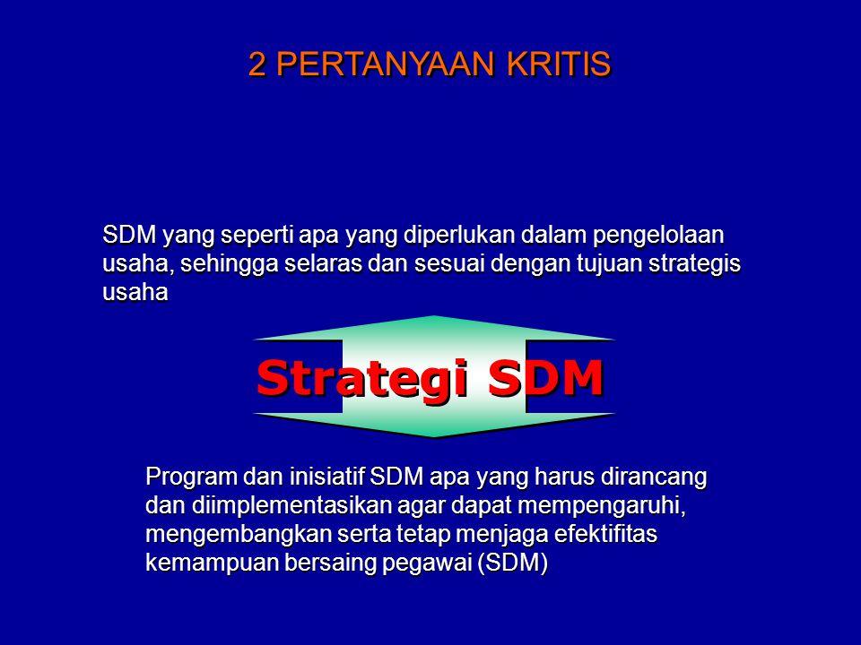 SDM yang seperti apa yang diperlukan dalam pengelolaan usaha, sehingga selaras dan sesuai dengan tujuan strategis usaha Program dan inisiatif SDM apa yang harus dirancang dan diimplementasikan agar dapat mempengaruhi, mengembangkan serta tetap menjaga efektifitas kemampuan bersaing pegawai (SDM) 2 PERTANYAAN KRITIS Strategi SDM