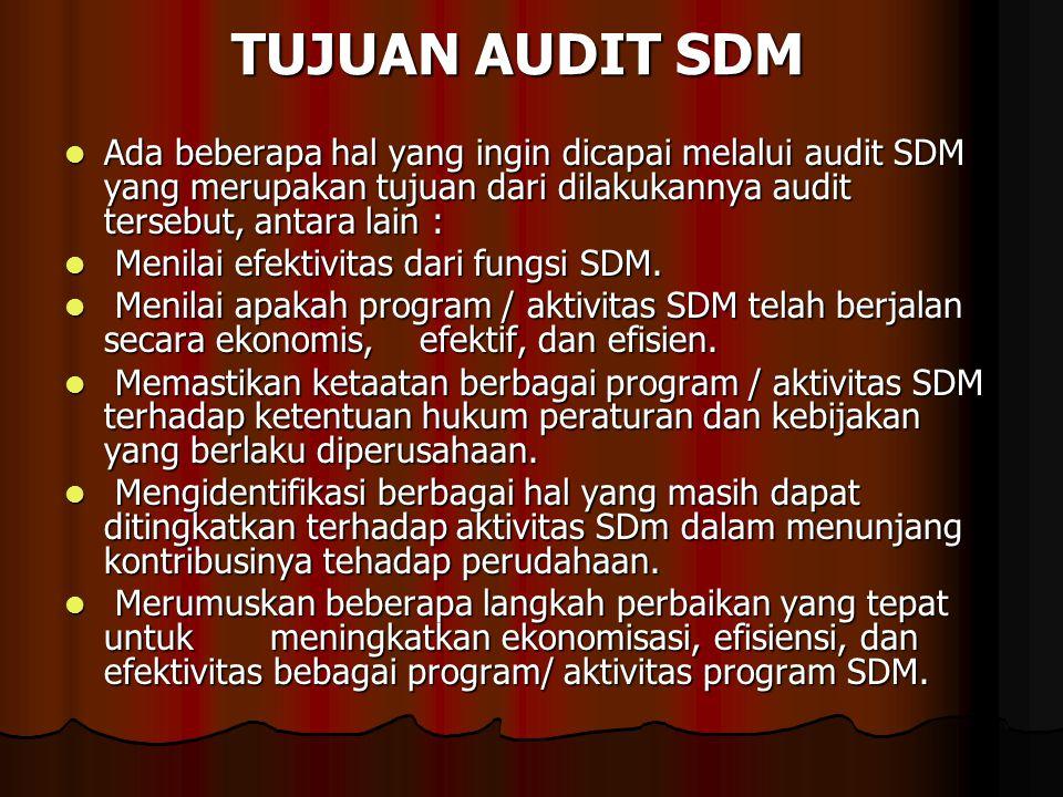TUJUAN AUDIT SDM Ada beberapa hal yang ingin dicapai melalui audit SDM yang merupakan tujuan dari dilakukannya audit tersebut, antara lain : Ada beber