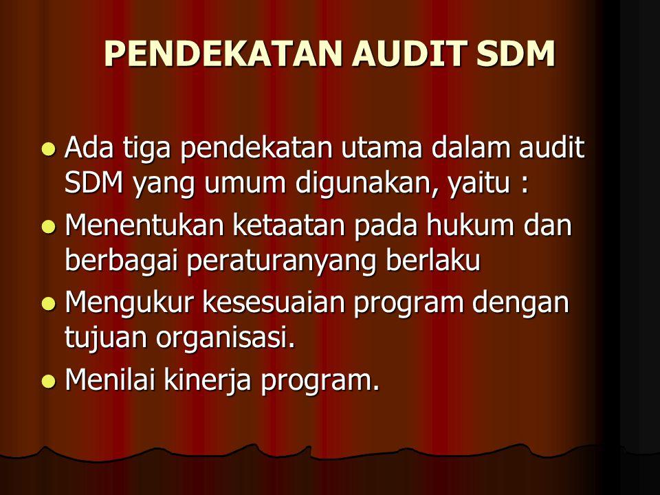 PENDEKATAN AUDIT SDM Ada tiga pendekatan utama dalam audit SDM yang umum digunakan, yaitu : Ada tiga pendekatan utama dalam audit SDM yang umum diguna