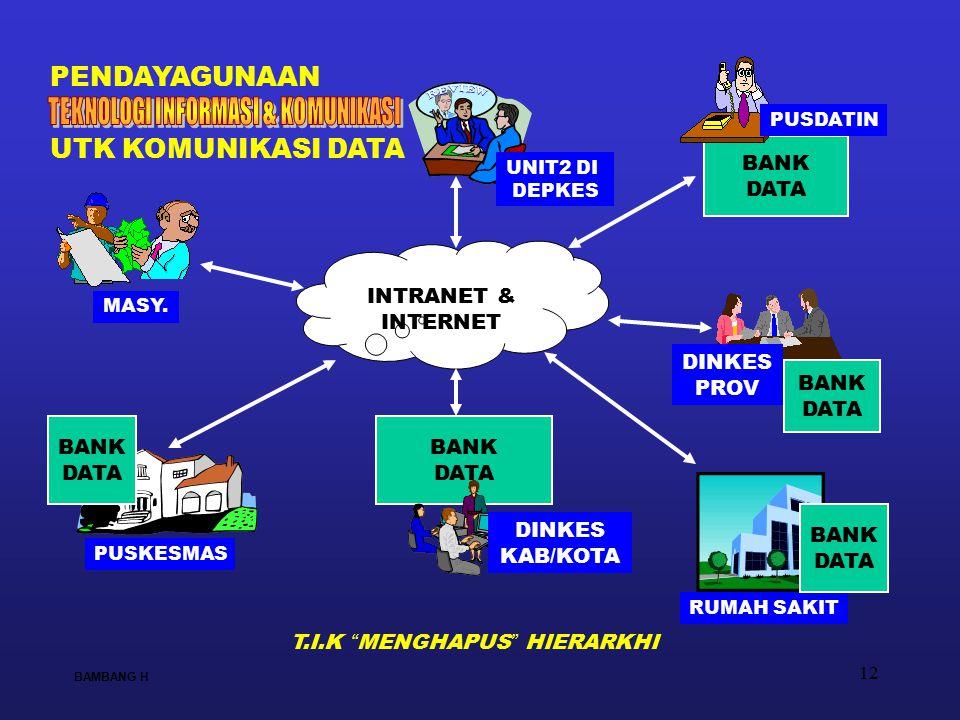 12 BANK DATA INTRANET & INTERNET BANK DATA DINKES KAB/KOTA PUSKESMAS RUMAH SAKIT UNIT2 DI DEPKES MASY. BAMBANG H PENDAYAGUNAAN BANK DATA BANK DATA UTK