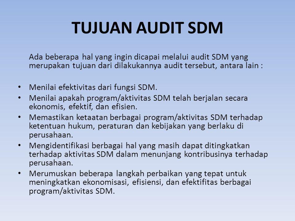 TUJUAN AUDIT SDM Ada beberapa hal yang ingin dicapai melalui audit SDM yang merupakan tujuan dari dilakukannya audit tersebut, antara lain : Menilai e