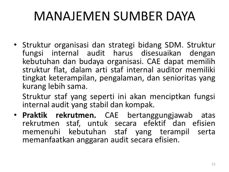 MANAJEMEN SUMBER DAYA Struktur organisasi dan strategi bidang SDM. Struktur fungsi internal audit harus disesuaikan dengan kebutuhan dan budaya organi