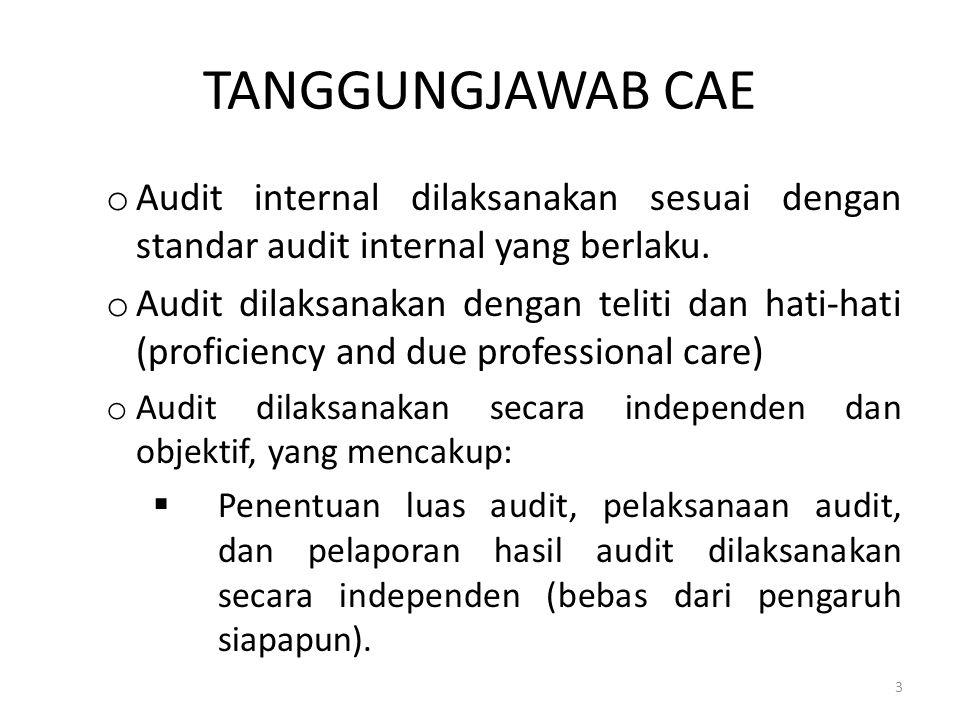 TANGGUNGJAWAB CAE o Audit internal dilaksanakan sesuai dengan standar audit internal yang berlaku. o Audit dilaksanakan dengan teliti dan hati-hati (p
