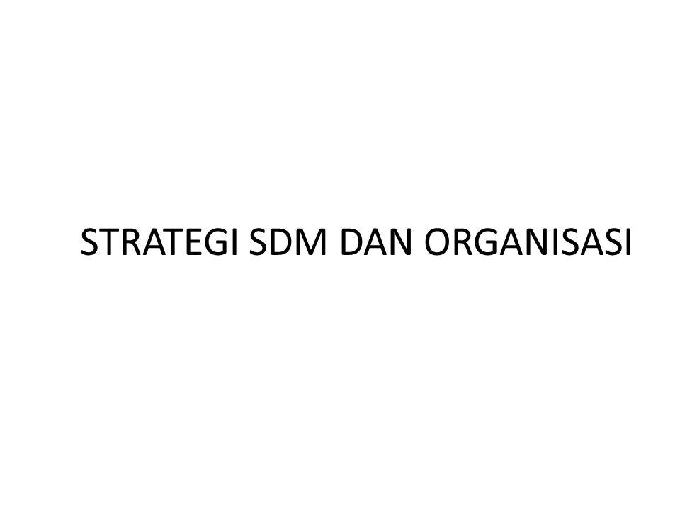 STRATEGI SDM DAN ORGANISASI