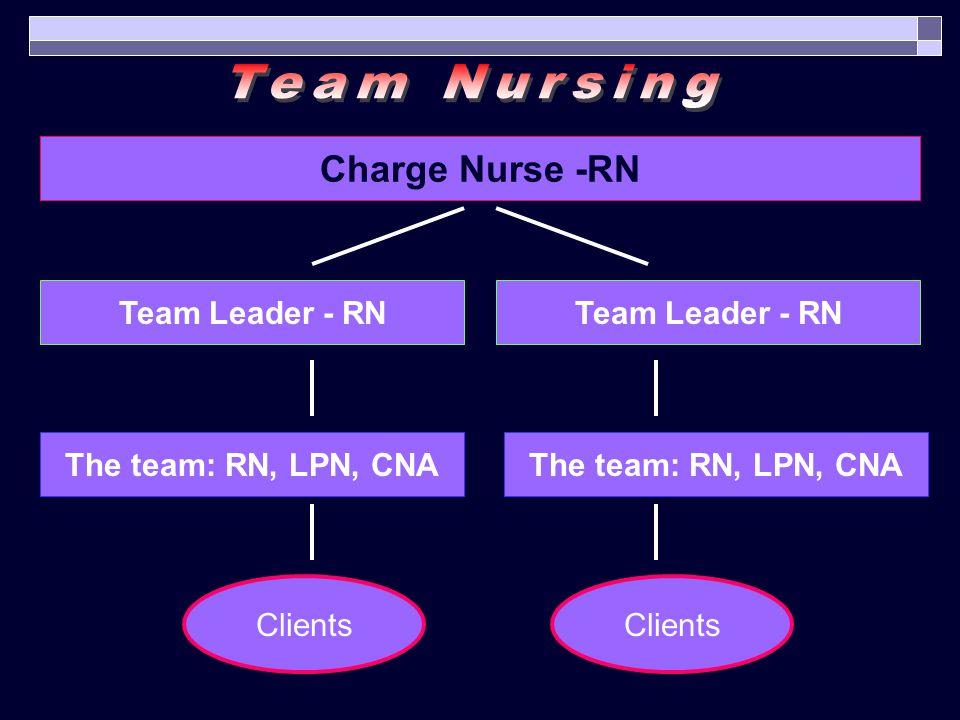 Charge Nurse -RN Team Leader - RN The team: RN, LPN, CNA Clients