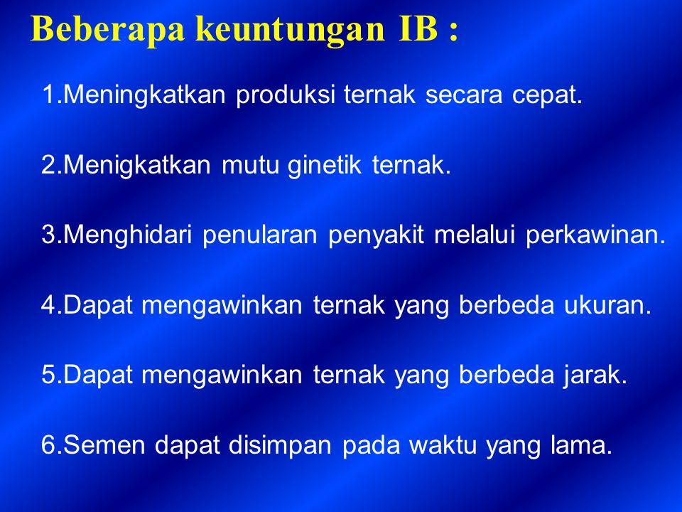 Beberapa keuntungan IB : 1.Meningkatkan produksi ternak secara cepat. 2.Menigkatkan mutu ginetik ternak. 3.Menghidari penularan penyakit melalui perka