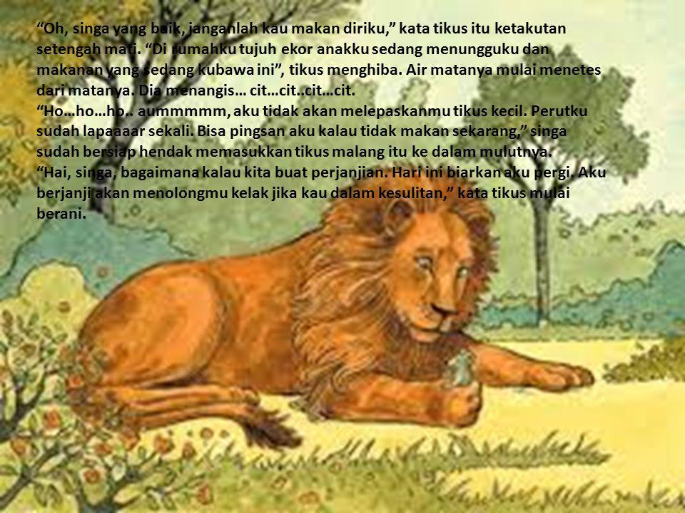 Oh, singa yang baik, janganlah kau makan diriku, kata tikus itu ketakutan setengah mati.