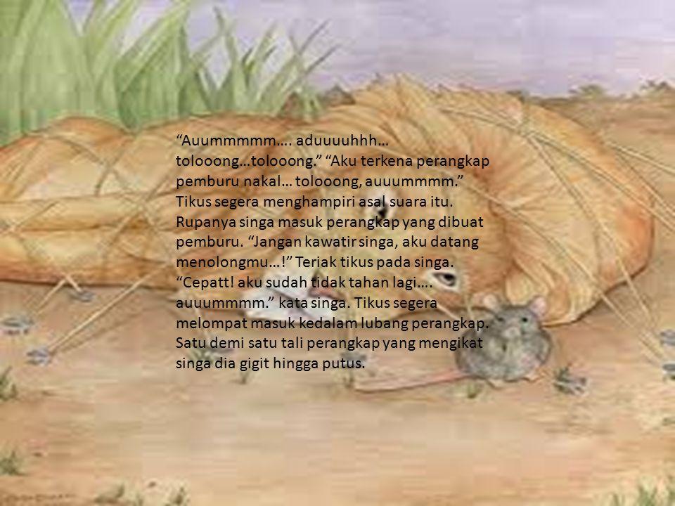 Dan akhirnya… singa terbebas.Segara dia melompat keluar dari lubang perangkap.