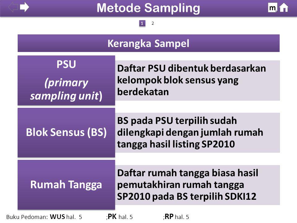 100% Catatan: Tahap I dan II dilakukan di BPS Pusat (Subdit Pengembangan Desain Sensus dan Survei).