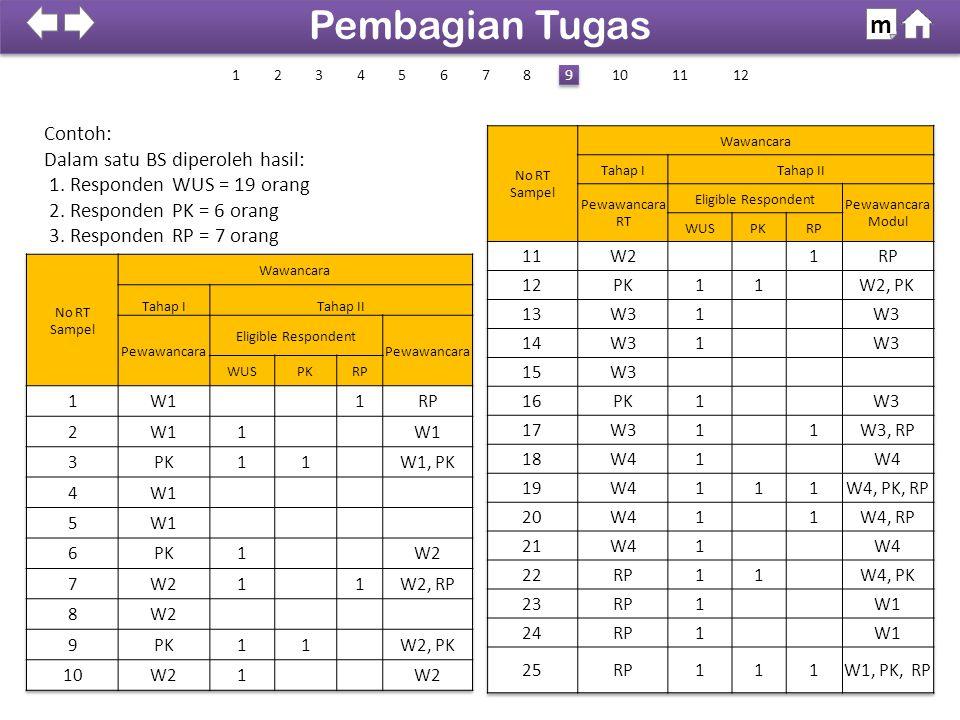 Contoh: Dalam satu BS diperoleh hasil: 1. Responden WUS = 19 orang 2. Responden PK = 6 orang 3. Responden RP = 7 orang 100% SDKI 2012 Pembagian Tugas