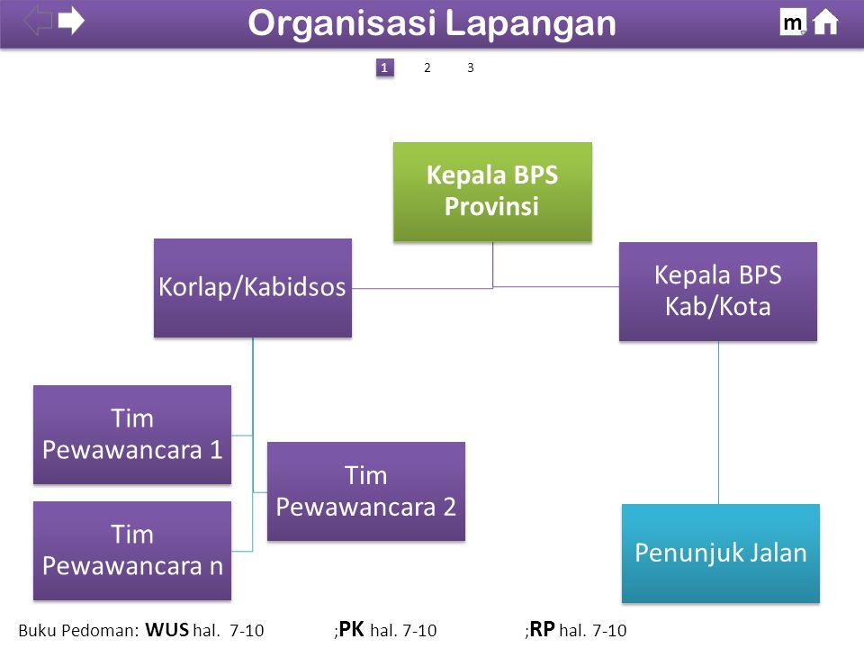 100% SDKI 2012 Organisasi Lapangan m Kepala BPS Provinsi Korlap/Kabidsos Tim Pewawancara 2 Tim Pewawancara 1 Tim Pewawancara n Kepala BPS Kab/Kota Pen