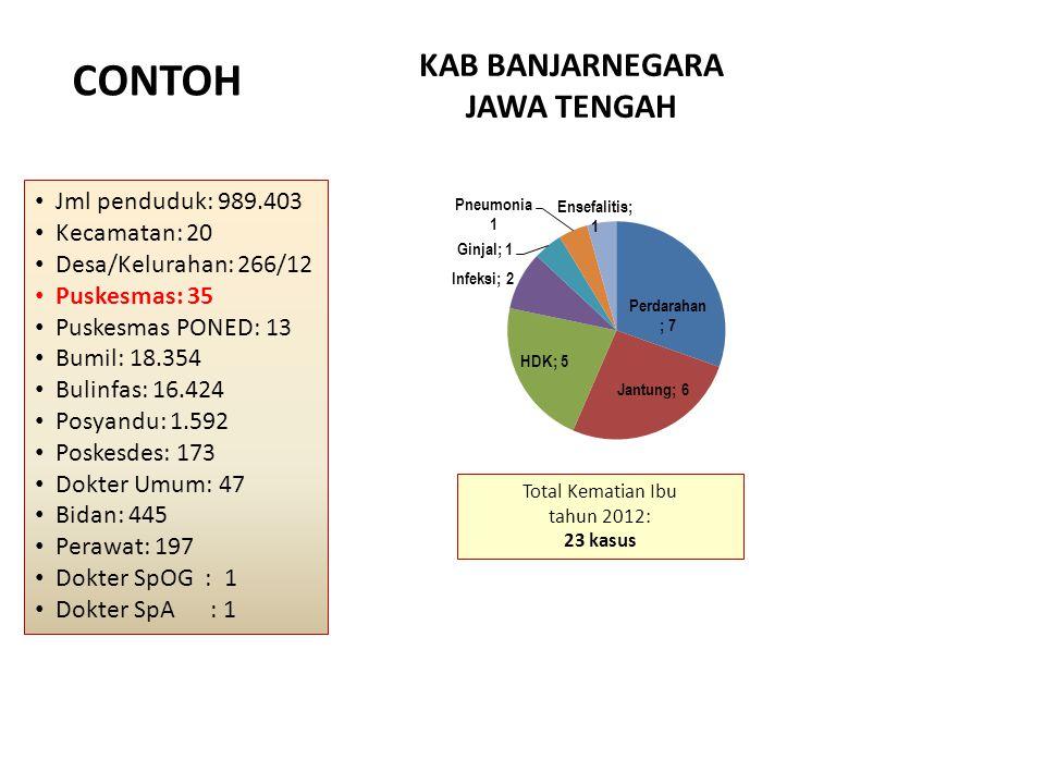 Jml penduduk: 989.403 Kecamatan: 20 Desa/Kelurahan: 266/12 Puskesmas: 35 Puskesmas PONED: 13 Bumil: 18.354 Bulinfas: 16.424 Posyandu: 1.592 Poskesdes: