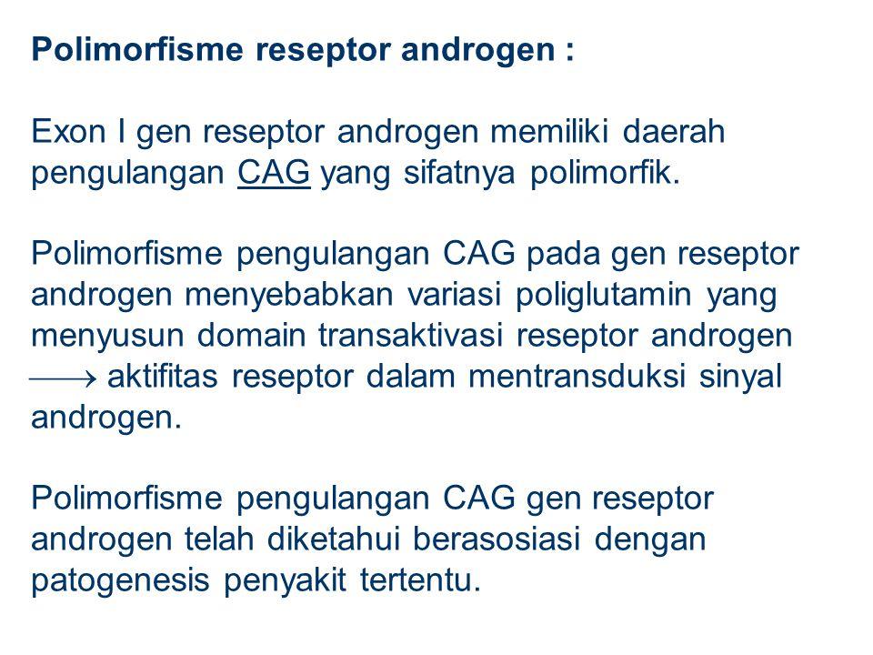 Polimorfisme reseptor androgen : Exon I gen reseptor androgen memiliki daerah pengulangan CAG yang sifatnya polimorfik. Polimorfisme pengulangan CAG p