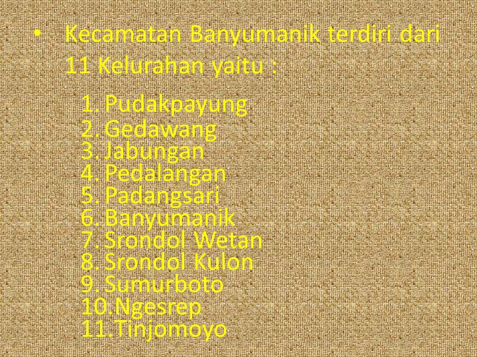 Kecamatan Banyumanik terdiri dari 11 Kelurahan yaitu : 1.Pudakpayung 2.Gedawang 3.Jabungan 4.Pedalangan 5.Padangsari 6.Banyumanik 7.Srondol Wetan 8.Srondol Kulon 9.Sumurboto 10.Ngesrep 11.Tinjomoyo