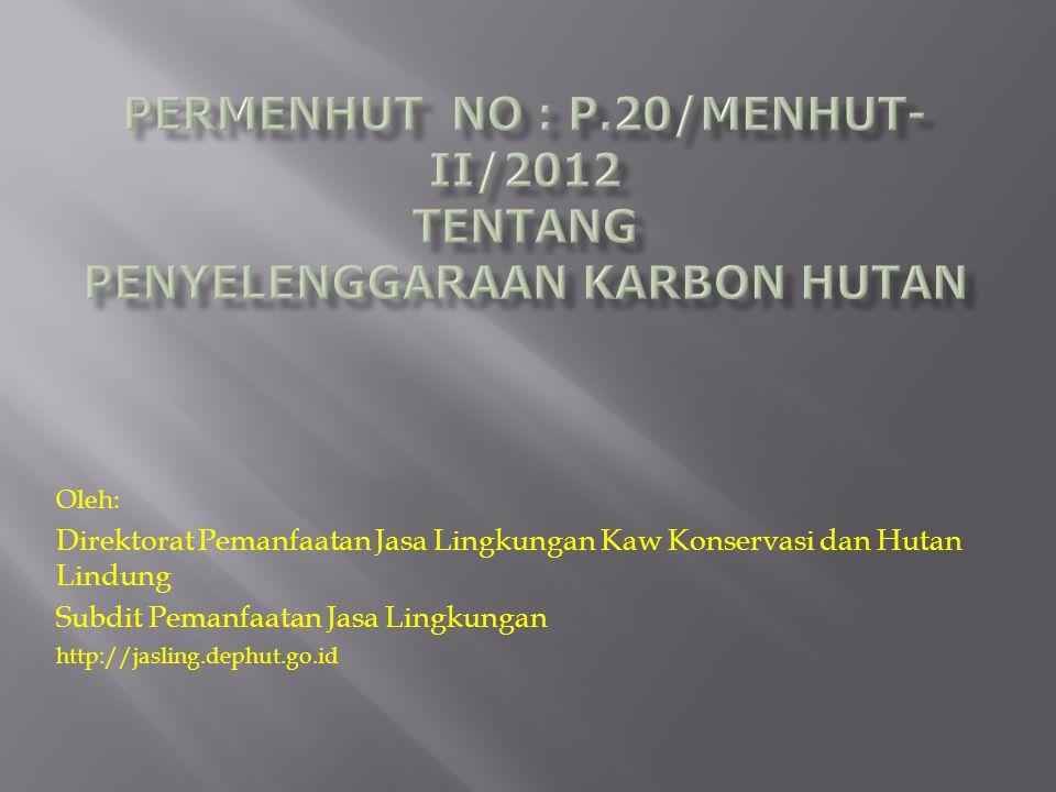 Oleh: Direktorat Pemanfaatan Jasa Lingkungan Kaw Konservasi dan Hutan Lindung Subdit Pemanfaatan Jasa Lingkungan http://jasling.dephut.go.id