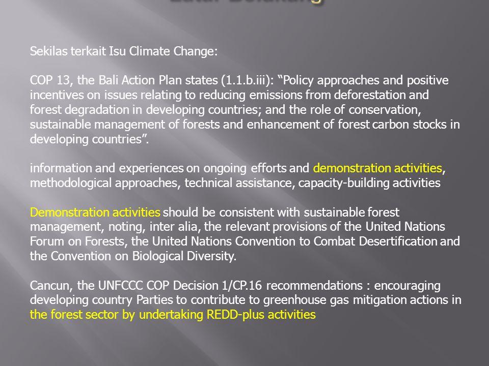 KERANGKA KERJA BARU (REDD+) MENCAKUP: – Pengurangan defor estasi dan degradasi hutan – Peran konservasi sumber daya hutan – Pengelolaan sumber daya hutan lestari – Peningkatan stok karbon hutan DEFORESTASI ADALAH PERUBAHAN KAWASAN HUTAN/BERHUTAN MENJADI KAWASAN TIDAK BERHUTAN SECARA PERMANEN DEGRADASI ADALAH PERUBAHAN KUALITAS TEGAKAN PADA KAWASAN HUTAN/BERHUTAN