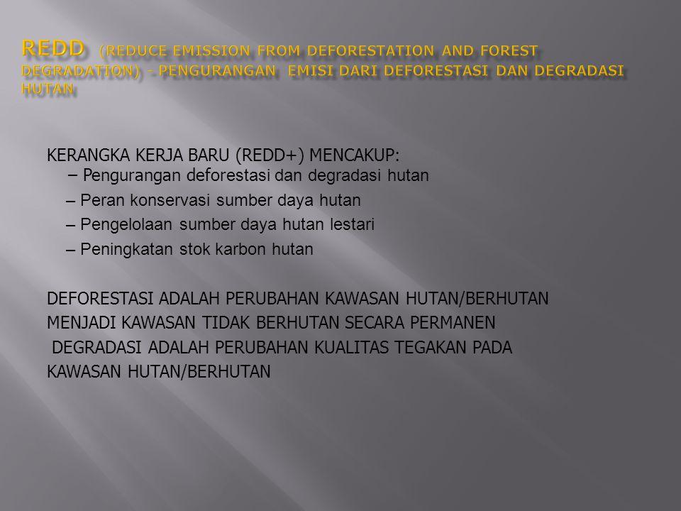 Sekitar 60% dari emisi gas rumah kaca Indonesia berasal dari sektor LULUCF (Indonesia: The First National Communication, 1999).