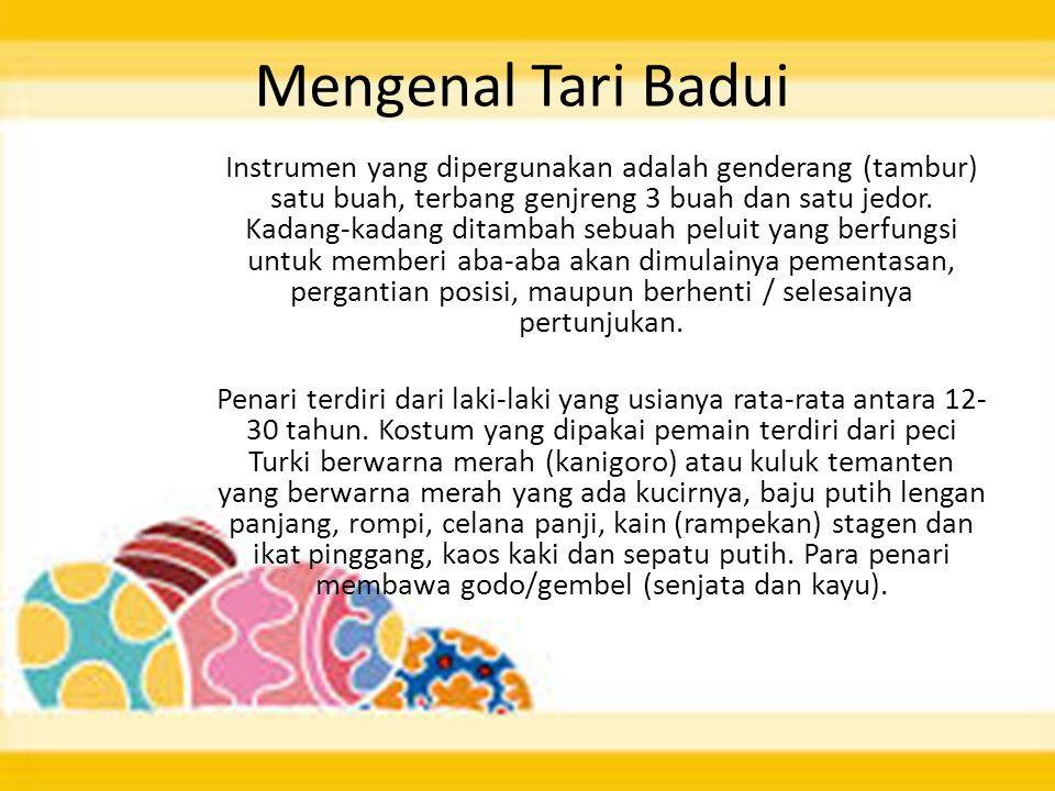 Mengenal Tari Badui Instrumen yang dipergunakan adalah genderang (tambur) satu buah, terbang genjreng 3 buah dan satu jedor. Kadang-kadang ditambah se