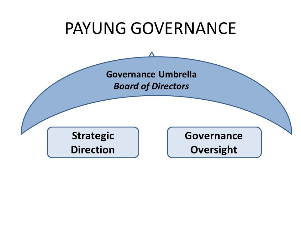 PAYUNG GOVERNANCE Governance Umbrella Board of Directors Strategic Direction Governance Oversight