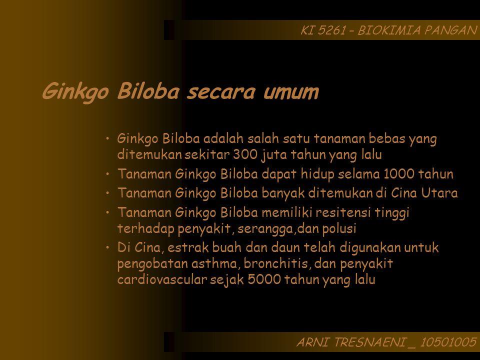 ARNI TRESNAENI _ 10501005 KI 5261 – BIOKIMIA PANGAN Ginkgo Biloba adalah salah satu tanaman bebas yang ditemukan sekitar 300 juta tahun yang lalu Tana