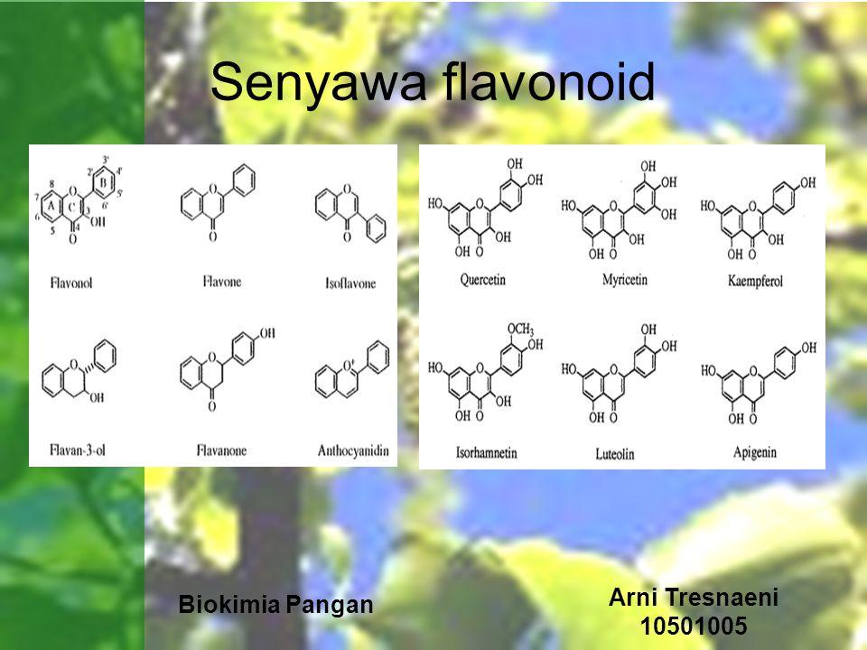 Biokimia Pangan Arni Tresnaeni 10501005 Senyawa flavonoid