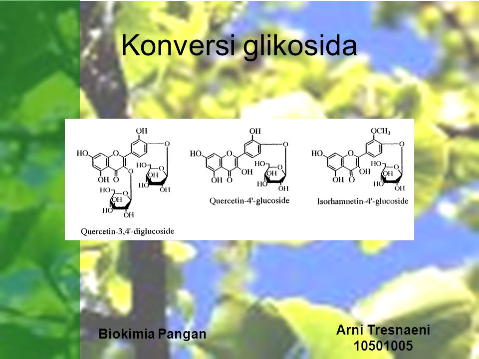 Biokimia Pangan Arni Tresnaeni 10501005 Konversi glikosida