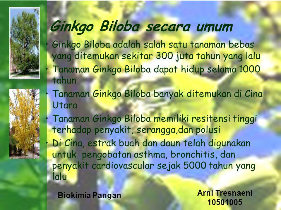 Biokimia Pangan Arni Tresnaeni 10501005 Kandungan Ginkgo Biloba Properti utama dari Ginkgo Kandungan daun : –flavonoids (ginkgolide, quercitin, kaempferol) –ginkgolic acid –bilobetin –pro-anthocyanidins –ascorbic acid –carotenoids Kandungan buah : –essential oil –fatty acid –tannin –and resin