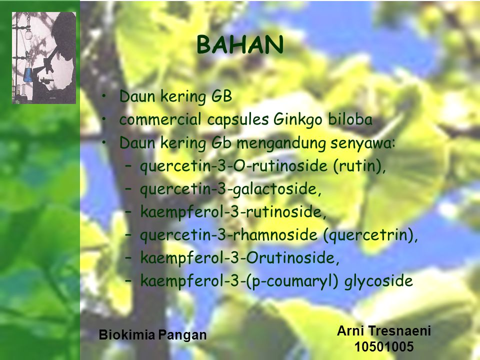 Biokimia Pangan Arni Tresnaeni 10501005 BAHAN Daun kering GB commercial capsules Ginkgo biloba Daun kering Gb mengandung senyawa: –quercetin-3-O-rutinoside (rutin), –quercetin-3-galactoside, –kaempferol-3-rutinoside, –quercetin-3-rhamnoside (quercetrin), –kaempferol-3-Orutinoside, –kaempferol-3-(p-coumaryl) glycoside