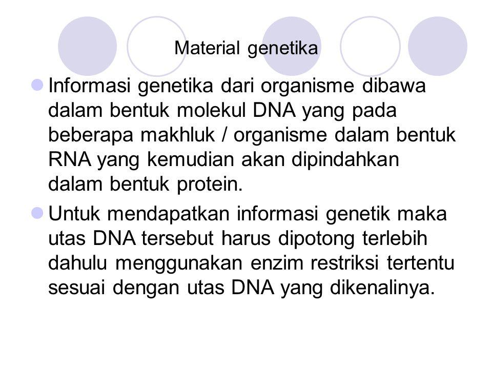 Material genetika Informasi genetika dari organisme dibawa dalam bentuk molekul DNA yang pada beberapa makhluk / organisme dalam bentuk RNA yang kemud