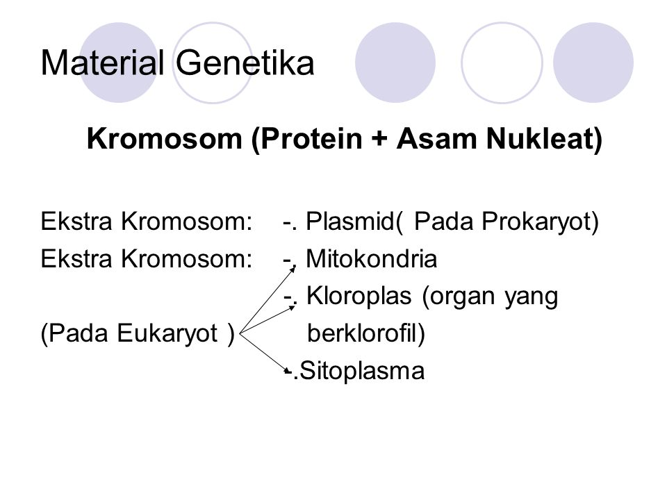 Material Genetika Kromosom (Protein + Asam Nukleat) Ekstra Kromosom: -. Plasmid( Pada Prokaryot) Ekstra Kromosom: -. Mitokondria -. Kloroplas (organ y