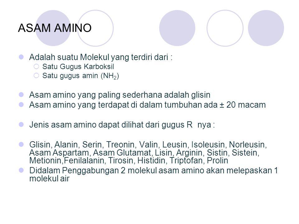 ASAM AMINO Adalah suatu Molekul yang terdiri dari :  Satu Gugus Karboksil  Satu gugus amin (NH 2 ) Asam amino yang paling sederhana adalah glisin As