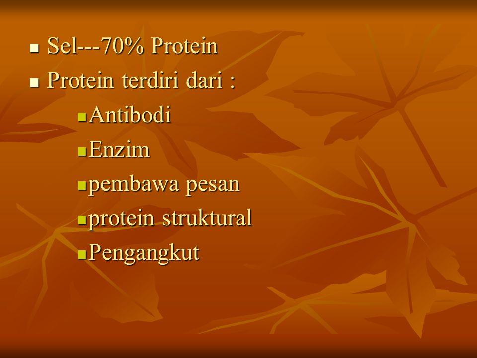 Sel---70% Protein Sel---70% Protein Protein terdiri dari : Protein terdiri dari : Antibodi Antibodi Enzim Enzim pembawa pesan pembawa pesan protein st