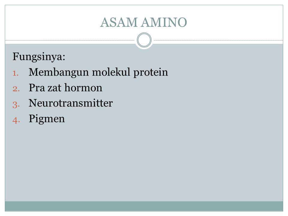 ASAM AMINO Fungsinya: 1. Membangun molekul protein 2. Pra zat hormon 3. Neurotransmitter 4. Pigmen