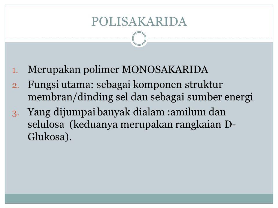 POLISAKARIDA 1. Merupakan polimer MONOSAKARIDA 2. Fungsi utama: sebagai komponen struktur membran/dinding sel dan sebagai sumber energi 3. Yang dijump