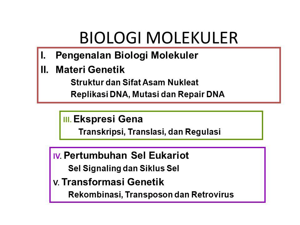 BIOLOGI MOLEKULER I.Pengenalan Biologi Molekuler II.Materi Genetik Struktur dan Sifat Asam Nukleat Replikasi DNA, Mutasi dan Repair DNA III. Ekspresi