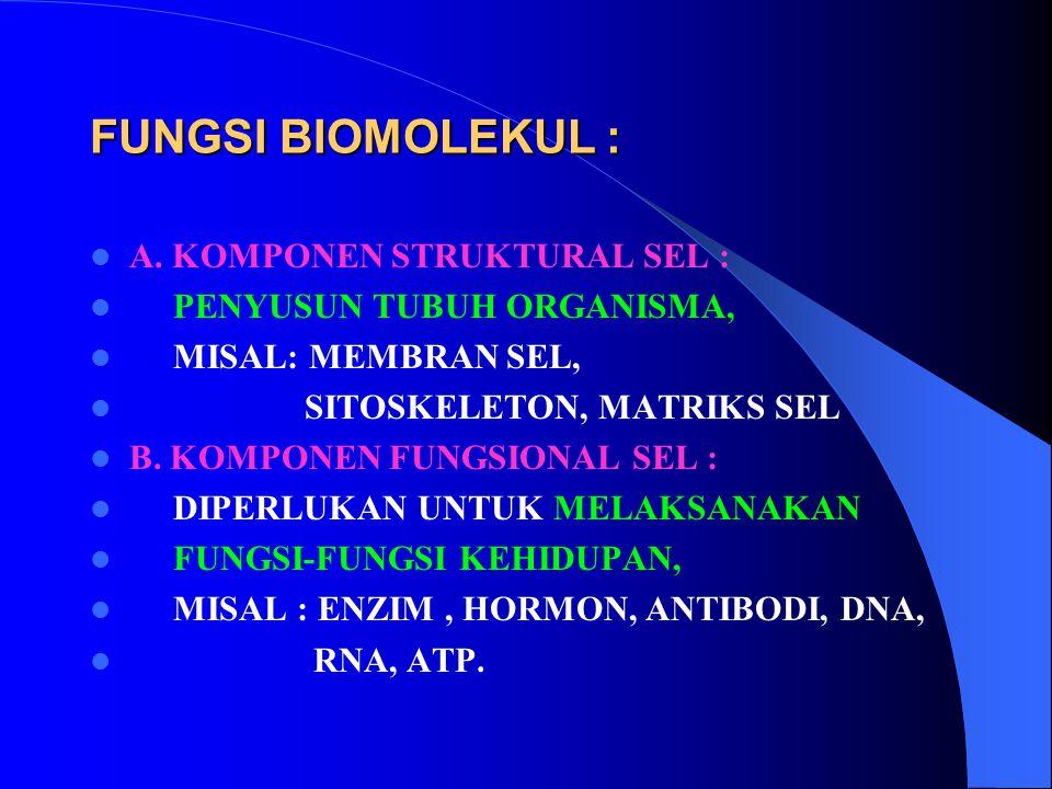 FUNGSI BIOMOLEKUL : A. KOMPONEN STRUKTURAL SEL : PENYUSUN TUBUH ORGANISMA, MISAL: MEMBRAN SEL, SITOSKELETON, MATRIKS SEL B. KOMPONEN FUNGSIONAL SEL :