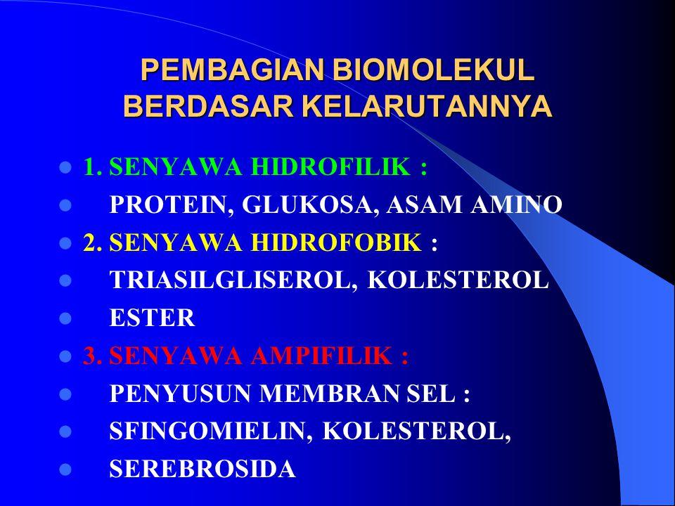 PEMBAGIAN BIOMOLEKUL BERDASAR KELARUTANNYA 1. SENYAWA HIDROFILIK : PROTEIN, GLUKOSA, ASAM AMINO 2. SENYAWA HIDROFOBIK : TRIASILGLISEROL, KOLESTEROL ES