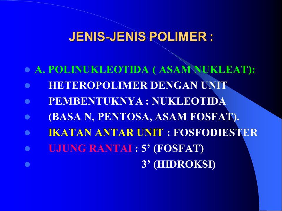 JENIS-JENIS POLIMER : A. POLINUKLEOTIDA ( ASAM NUKLEAT): HETEROPOLIMER DENGAN UNIT PEMBENTUKNYA : NUKLEOTIDA (BASA N, PENTOSA, ASAM FOSFAT). IKATAN AN