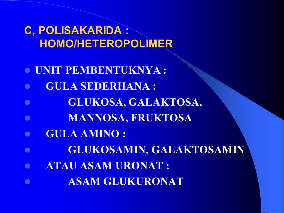 C, POLISAKARIDA : HOMO/HETEROPOLIMER UNIT PEMBENTUKNYA : GULA SEDERHANA : GLUKOSA, GALAKTOSA, MANNOSA, FRUKTOSA GULA AMINO : GLUKOSAMIN, GALAKTOSAMIN